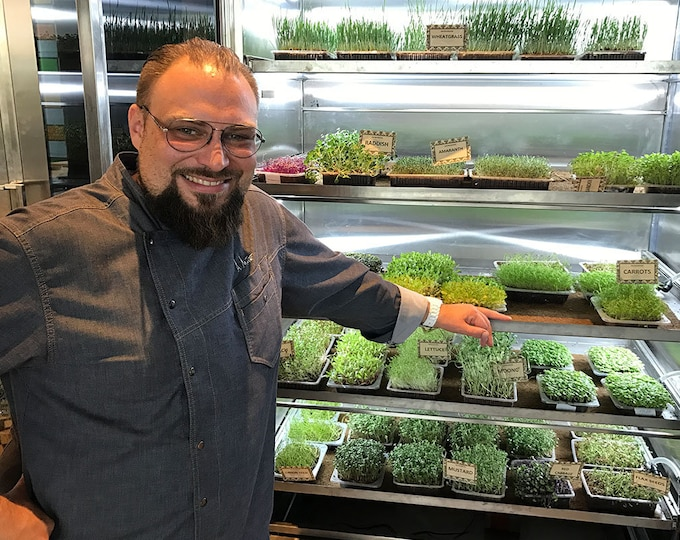 Restaurant & Commercial Microgreen Grow Trays, Trays, Seeds and Media 200+ crops