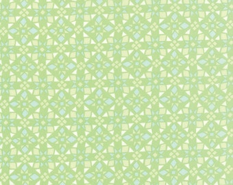Kate Spain Canyon for Moda- Four Corners Cactus- Lime and aqua triangle fabric