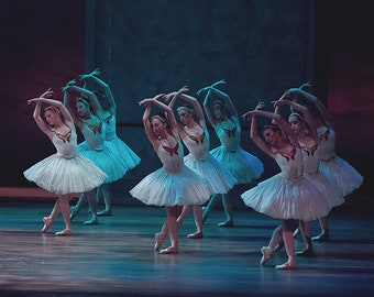 Dance /Ballet Print - 'Swan Lake #4'