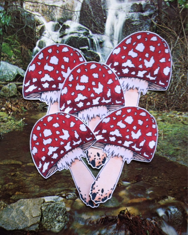 Deadly Toadstool Sticker image 0