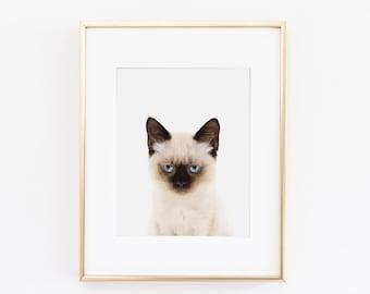 Siamese Cat Nursery Art Print   Cat Wall Art   Nursery Printable   Nursery Wall Art   Cat Art Print   Animal Nursery Art  