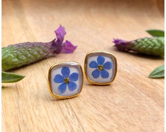 Forget-me-not flowers   square stud sares   gilded   approx. 12 mm each