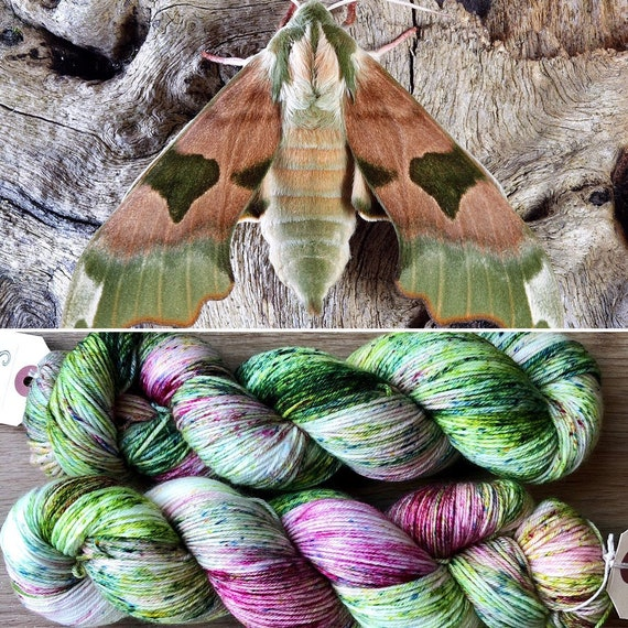 January Hawkmoth, 100% extrafine merino 4ply fingering yarn