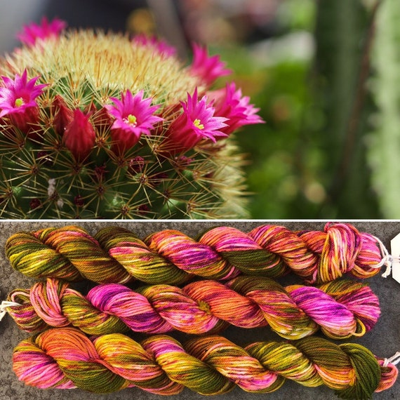 Flowering Cactus 20g Miniskein, merino nylon blend sock yarn
