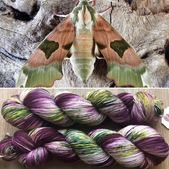 Christmas Hawkmoth BFL, indie dyed bluefaced leicester nylon sock yarn