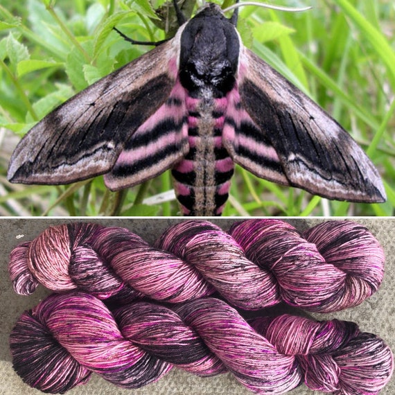 Privet Hawkmoth, pink black merino nylon speckled sock yarn
