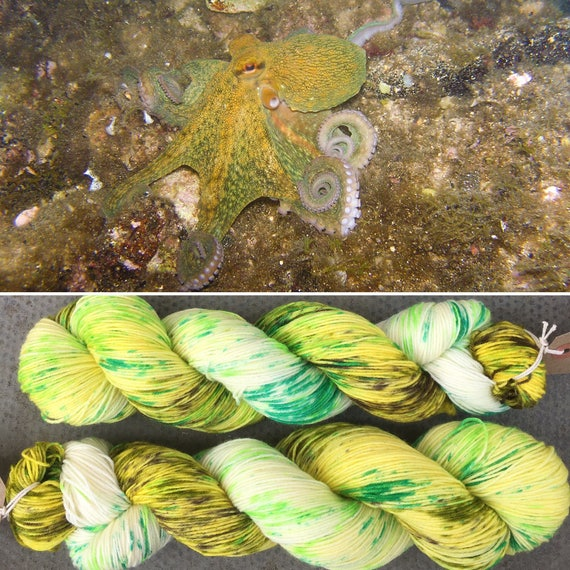 SALE Tentacles! speckled cephalopod theme indie dyed merino nylon sock yarn