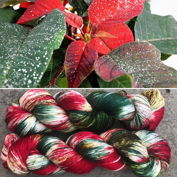 Poinsettia, 85/15 superwash extrafine merino nylon 4ply fingering sock yarn