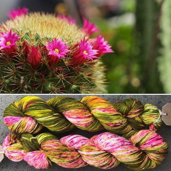 Flowering Cactus DK, indie dyed merino nylon yarn