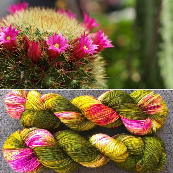 Flowering Cactus, indie dyed merino nylon sock yarn