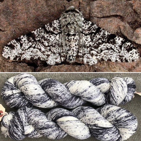 Peppered Moth, merino nylon blend speckle dyed indie sock yarn