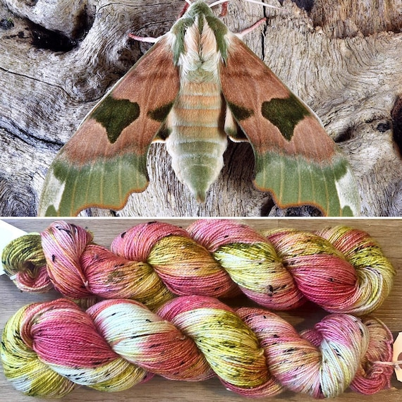 Elephant Hawkmoth Donegal Sock, indie dyed merino yarn