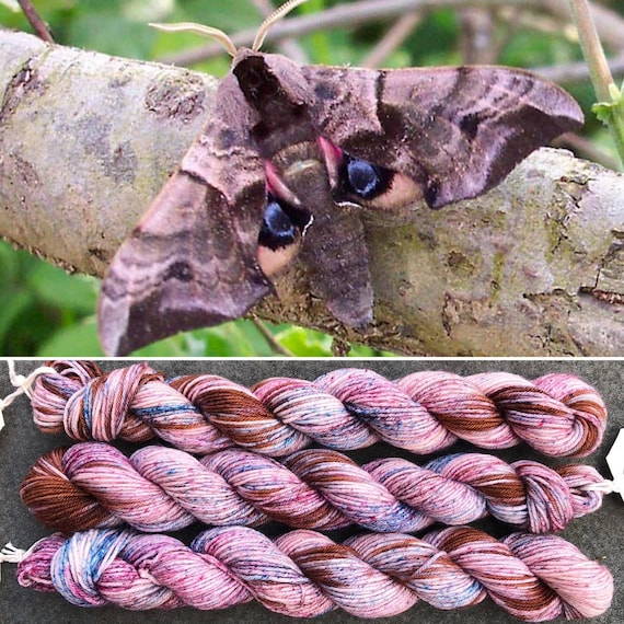 June Hawkmoth 20g Miniskein, merino nylon sock yarn