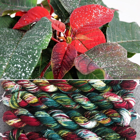 Poinsettia 20g Miniskein, soft smooth merino nylon sock yarn