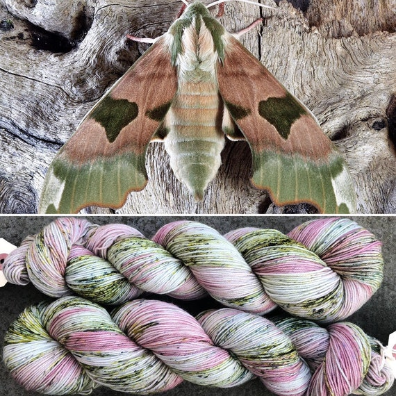 February Hawkmoth, indie dyed merino nylon sock yarn