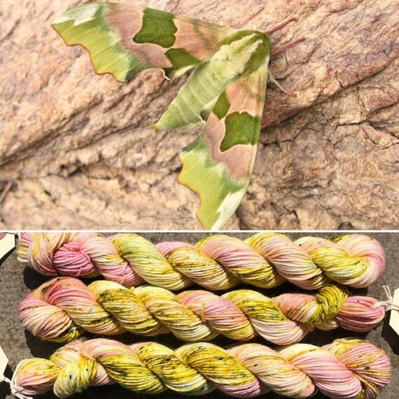 Summer Hawkmoth 20g miniskein, merino nylon sock yarn