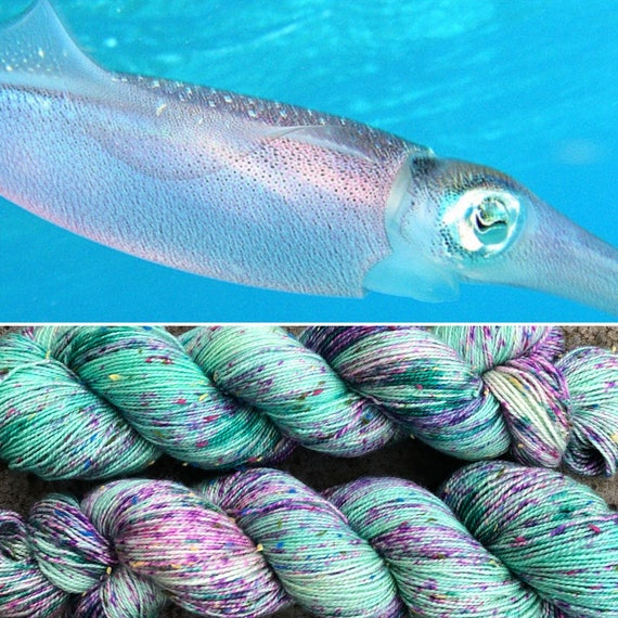 Caribbean Reef Squid Donegal Sock, speckled merino yarn with multicoloured neps