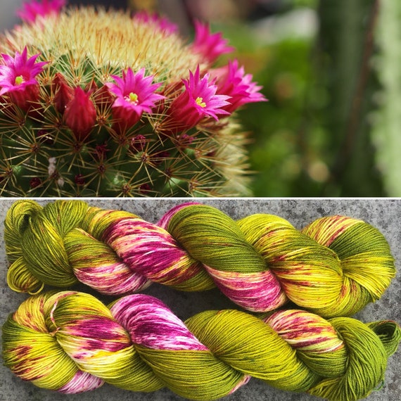 Flowering Cactus BFL, indie dyed bluefaced leicester nylon blend sock yarn