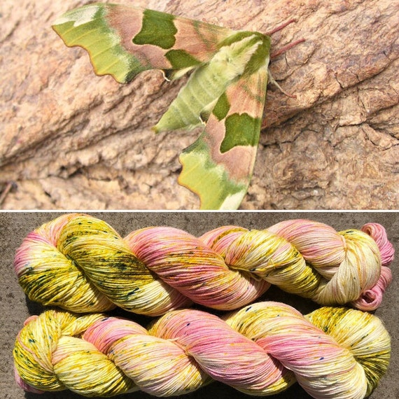 Summer Hawkmoth, merino nylon sock yarn