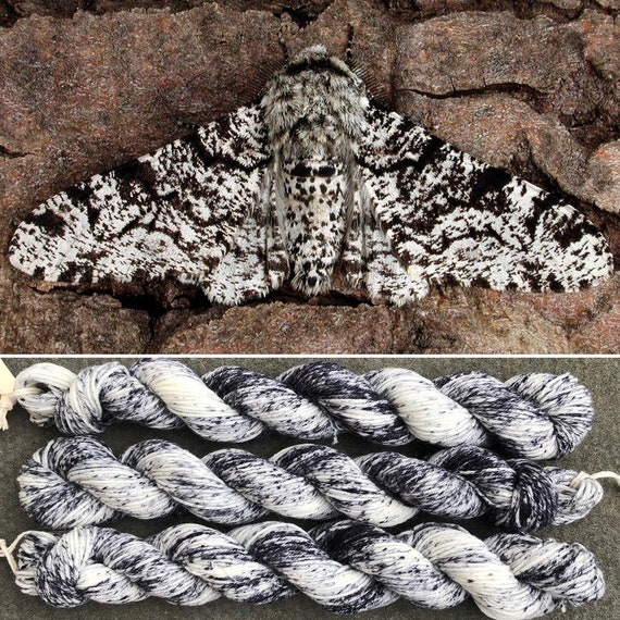 Peppered Moth 20g Miniskein, merino nylon blend speckle dyed indie sock yarn