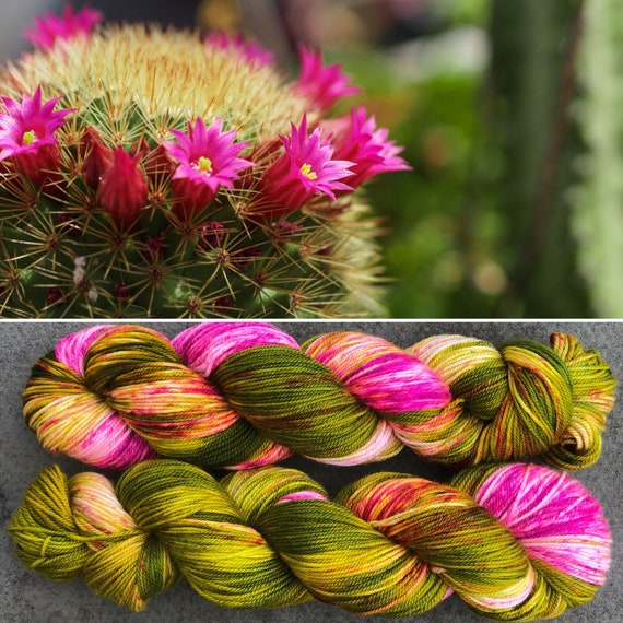 SALE Flowering Cactus Sport, indie dyed merino nylon baby sock yarn