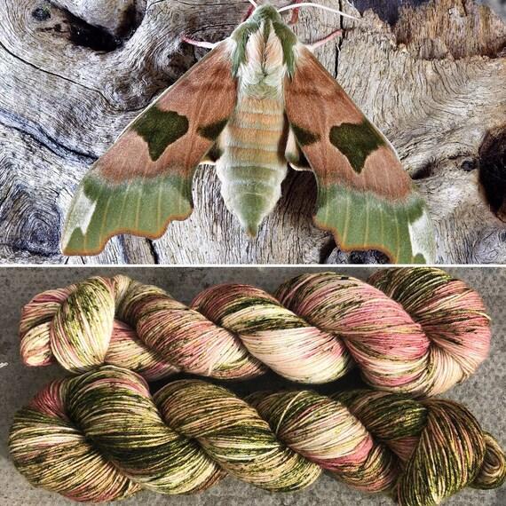 Elephant Hawkmoth, indie dyed merino nylon sock yarn