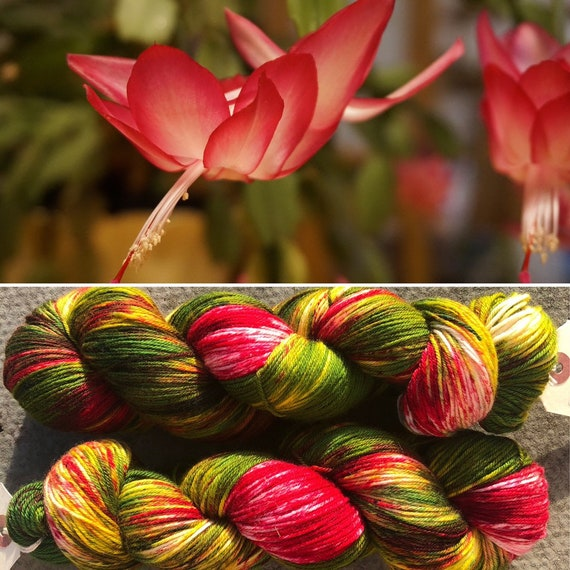 Christmas Cactus, indie dyed merino nylon sock yarn