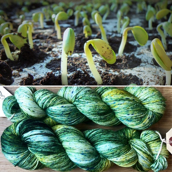 Seedling, 4ply fingering 100% merino yarn