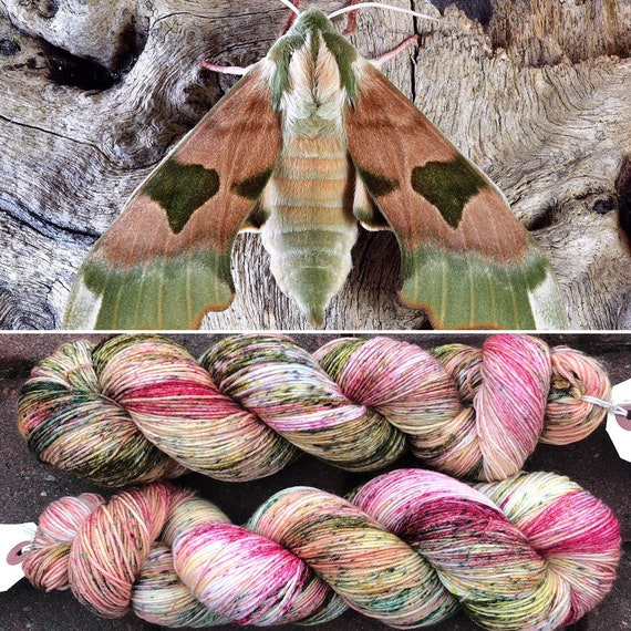 March Hawkmoth, indie dyed merino nylon sock yarn