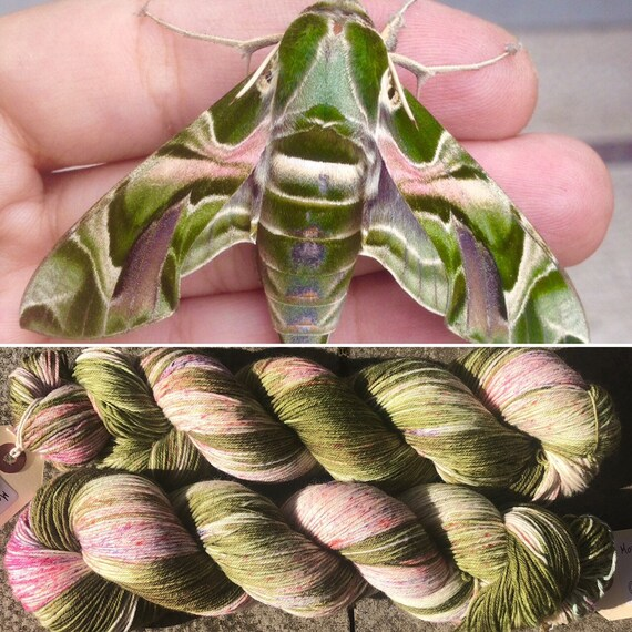 Oleander Hawkmoth, merino nylon speckled sock yarn