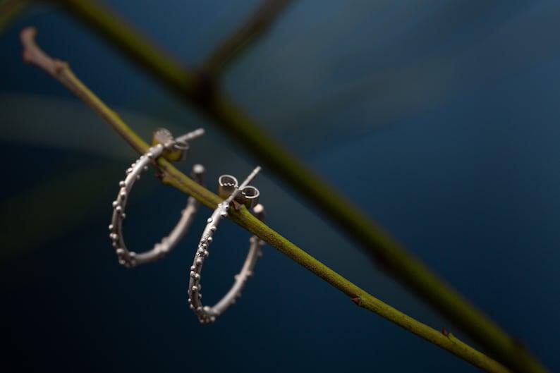 Circle creoles silver Hoop earrings coral Silver hoops image 0