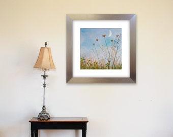 Moon Rise: field, nature, summer night, country, texture,home, office, wall decor, 8x8 metallic  fine art photograph