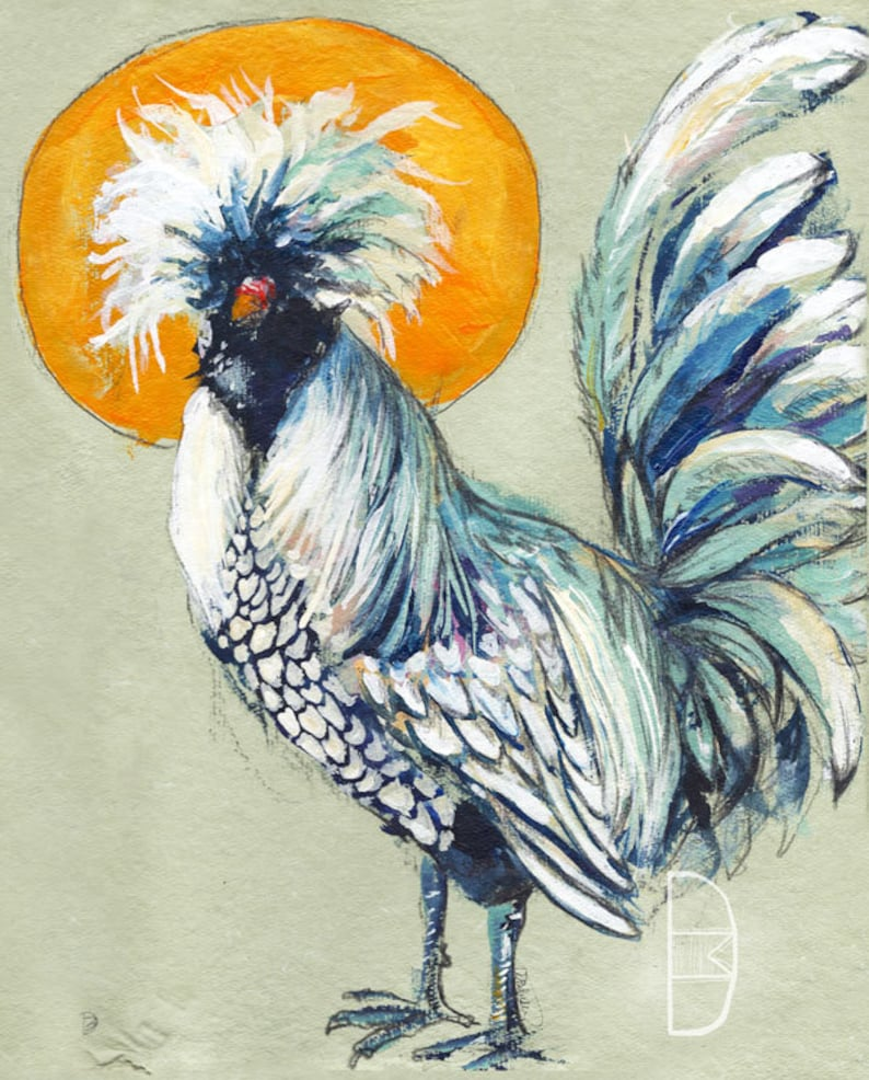 Polish Laced Chicken Print Polish Rooster Polish Chicken Etsy
