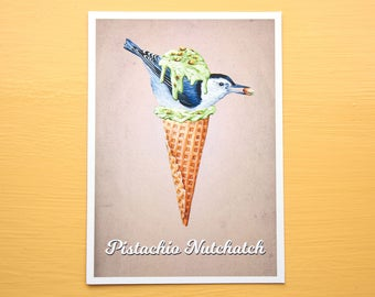 Pistachio Nuthatch - Ice Cream Bird - Pistachio Nut 5x7 Art Print