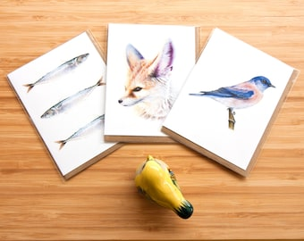Custom Variety Card Pack (3-pack) - Nature Painting - A2 Invitation Size - Wildlife Bird Painting - Fine Art - Blank Cards - Greeting Cards