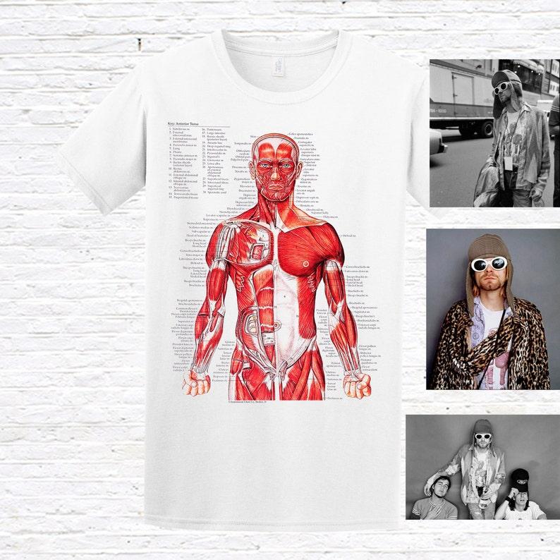 8cc5263ea Muscular System T-Shirt. as worn by Kurt Cobain | Etsy