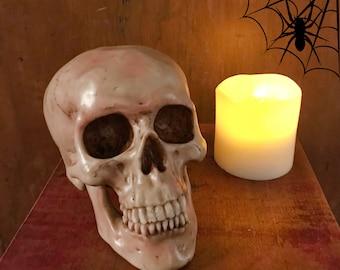 Spooky Human Skull Replica - Halloween Décor - Skeleton Skulls - Decorative Skull - Curiosities - Bones