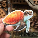 Watercolor Sea Turtle Die Cut Sticker | Turtle Sticker, Red Panda, Turtle Watercolor, Turtle, Sea Turtle, Art Sticker, Die Cut Sticker