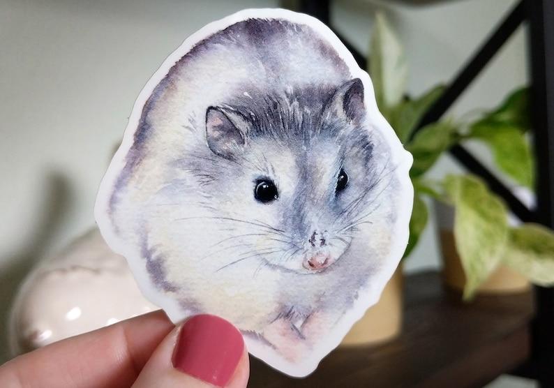 Hamster Sticker | Dwarf Hamster, Hamster, Grey Hamster, Sticker, Animal  Sticker, Vinyl Sticker, Watercolor Sticker, Art Sticker