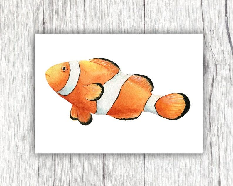 Watercolor Clownfish, Watercolor Clownfish, Ocean Animals, Marine Animals,  Fish Art, Clown Fish, Fish, Tropical Fish, Orange Fish, Ocean