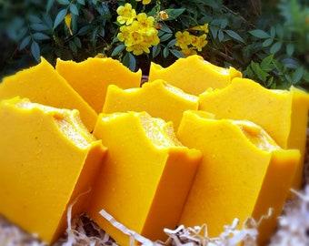 Unscented Organic Pumpkin Puree Soap