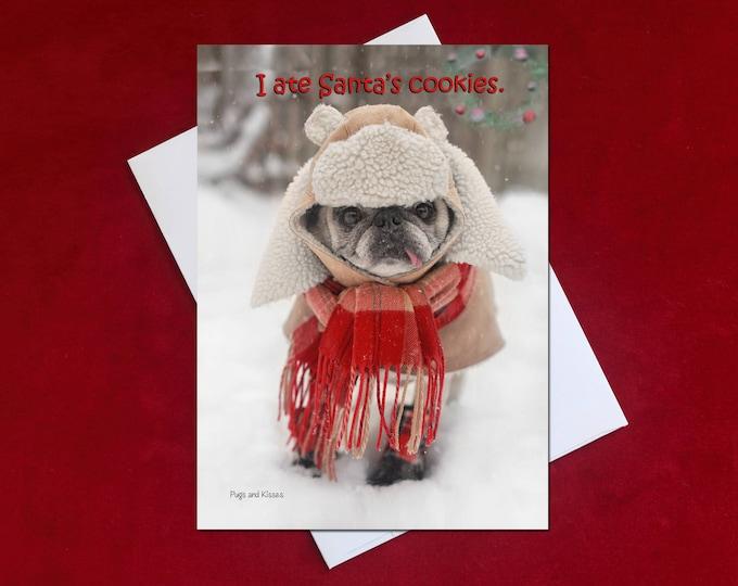 Funny Christmas Card - I Ate Santa's Cookies -Pug Christmas Card - 5x7