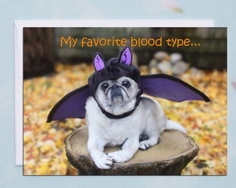 Halloween Cards Funny - My Favorite Blood Type - by Pugs and Kisses - 5x7