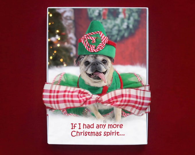 ALL NEW - BOXED Christmas Cards - If I Had Any More Christmas Spirit - Pug Christmas Card- 5x7