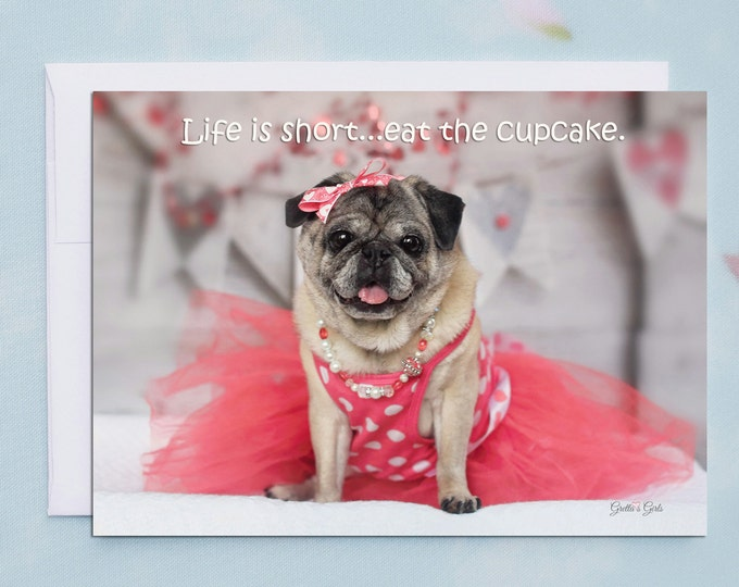 Funny Birthday Cards - Pug Card - Birthday Cards - 5x7