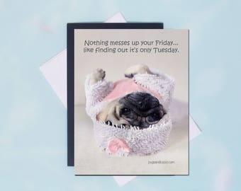 Pug Magnet - Nothing Messes Up Your Friday - 4x5 Pug magnet - by Pugs and Kisses