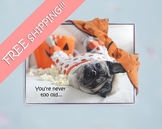 Box of 10 - All New- Halloween Cards Funny - Never to Old - 5x7