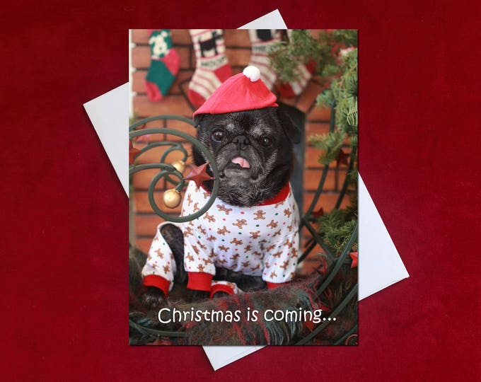 Funny Holiday Card - Christmas is Coming - Pug Holiday Card - 5x7
