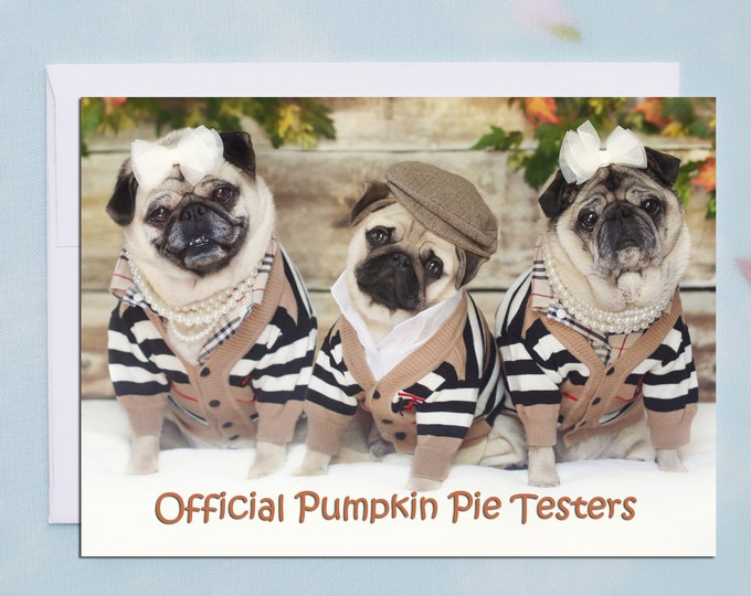 Thanksgiving Card - Official Pumpkin Pie Testers - Pug Card - Pugs and Kisses
