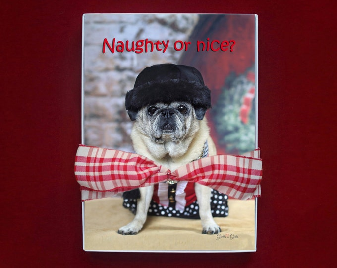 BOXED HOLIDAY Cards -  Naughty or Nice - Pug Holiday Cards - 5x7